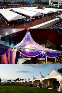Canopy and Marquee Tent